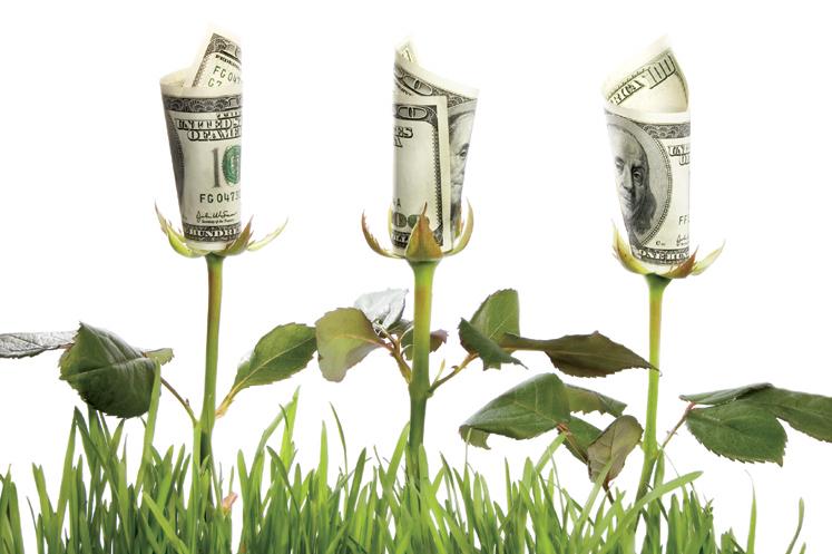 desarrollo economia: