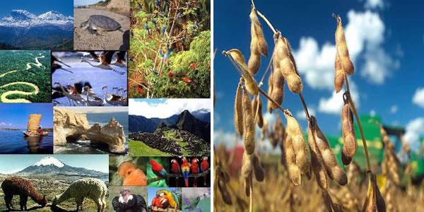 Resultado de imagen para Recursos Naturales de Brasil