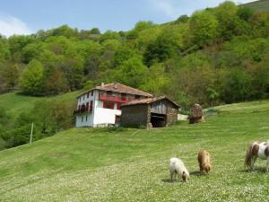 esp rural