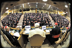vaticano sinodo