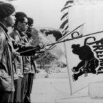 Las Panteras Negras cumplen 50 años y en EEUU aún persiste la opresión/ ¡Es la revoluión, baby!