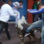 Argentina: acusan a opositores por andar pateando perros